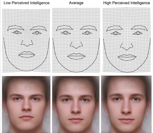 The Czech team said faces that are perceived as highly intelligent are longer, with a wide distance between the eyes. The perception of lower intelligence is associated with broader, more rounded faces.